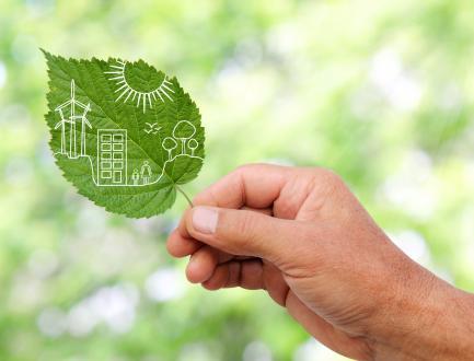 המהפך של פריס - מה אפשר ללמוד מהדרך שבה פריס מגיבה למשבר האקלים?