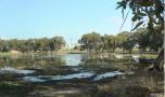 פארק בריכת החורף נתניה. תמונה: ויקיפדיה