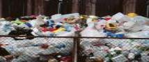 תמחור השקיות הניילון בעשר אגורות - האם הוא השיג שינוי משמעותי?