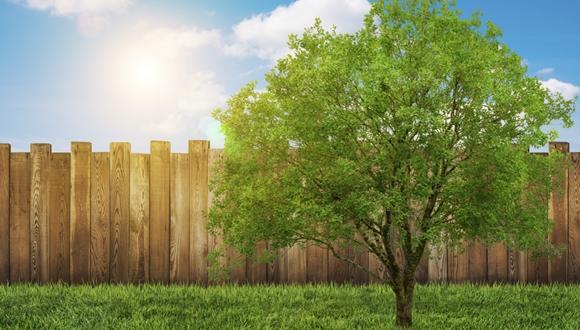 """בחירת חומרים לבנייה ירוקה: מזעור נזקים סביבתיים וחיסכון כלכלי ע""""י הטמעת  גישת מחזור חיים בהליכי תכנון משולב"""