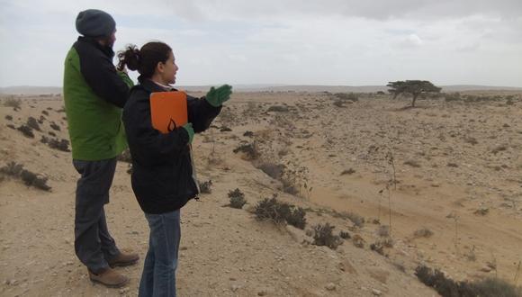 כריית חומר ואדי והסדרת נחלי אכזב בסביבה יובשנית - השלכות גיאומורפולוגיות ואקולוגיות בנחל בשור