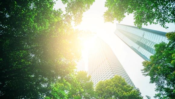 היבטים קוגניטיביים של תכנון ומשמעותם בתכנון עירוני:  שאלת הניבוי בקני מידה עירוניים שונים