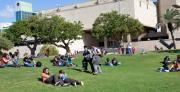 אקולוגיה של קמפוס אוניברסיטת תל-אביב כמודל למרחב העירוני - היבטים של צמחייה ונוחות אקלימית