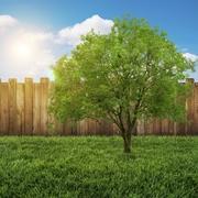 בחירת חומרים לבנייה ירוקה